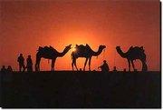 New Delhi India based Tour and Travel Operator.